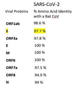 Genetic similarity of SARS-CoV-2 to a known bat coronavirus